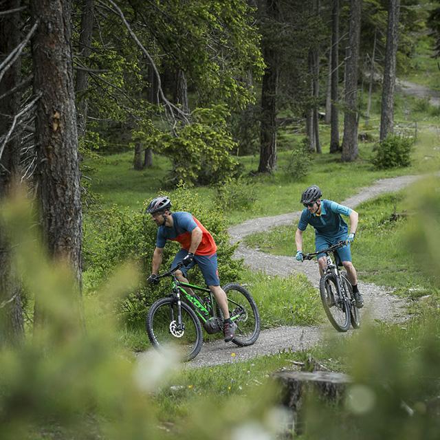 spust gorskih koles po gorski poti